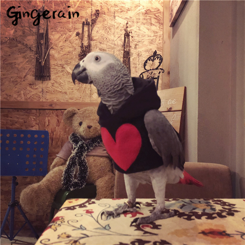 Gingerain Bird Clothes Parrot Clothes 7 July Original Hand-made Custom Bird Clothes Hooded Sweater 7 July
