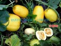 Hot sell 1 original package 200pcs per pack melon seeds, high sugar content yellow hami fruit seeds, green fruit seeds
