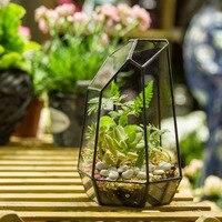 Tabletop Balcony Irregular Geometric Glass Flower Boxes Bonsai Succulent Fern Moss Planter Jardin Vertical Garden Flower Pots