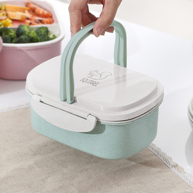 Handy Double-Layered Eco-Friendly Plastic Lunch Box