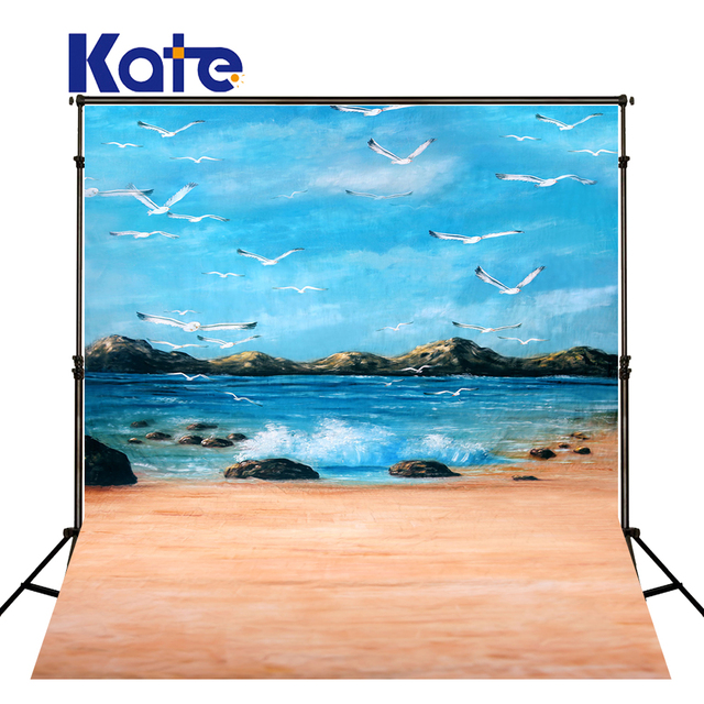 10x10ft Kate Beach Backdrop Sky Cloud Backdrops Newborn Photography Background Scenic For Photo Studio
