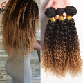 Ombre Peruvian Virgin Hair Extensions Kinky curly Virgin Hair deep curly 1b 4/27 3 Bundles Lot  3 Tone Ombre Human liangli Hair