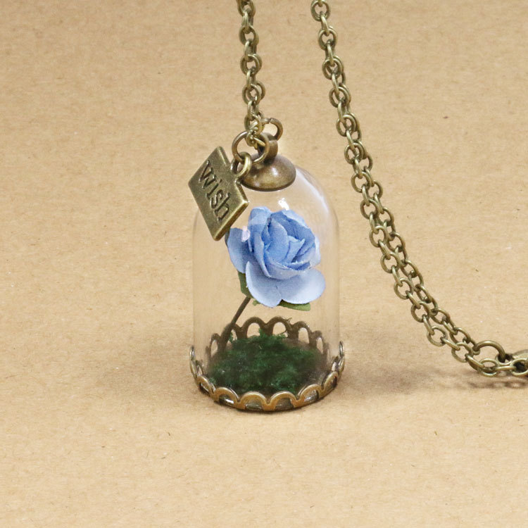 HTB13wRyQFXXXXc0XpXXq6xXFXXXk - 1PC jewelry Beauty and the Beast Necklace Wish Rose Flower in Glasses Pendant Necklace PTC 198