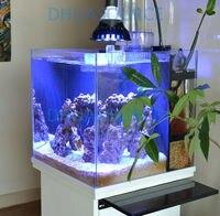 hot sales Customize colors E27 12w led bulb PAR38 12x3w Coral Reef Grow light High Power Fish Tank Aquarium Lamp free shipping