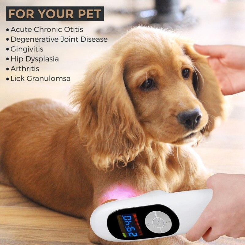 Vétérinaire utilisation animaux clinique animaux chiens chats chevaux blessure dispositif de guérison LLLT froid Laser thérapie médicale Machine thérapeutique CE