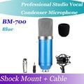 Профессиональный Blue БМ-700 Микрофон Кардиоидный Конденсаторный КТВ Pro Audio Studio Запись Вокала КТВ Караоке Микрофон + Шок Гора + Пена