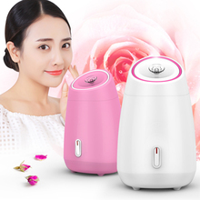 Fruit Vegetable Facial Steamer Household Spa Beauty Instrument Thermal Nano Spray Water Whitening Face Steamer Machine Skin Care