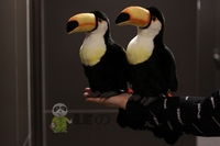 Toucan figurine toucan plush toy toucan doll plush toy good quality holiday gift 25cm