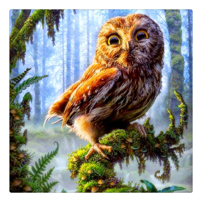 orest Owl Needlework Square Broderi Diy Full Drill Diamond Måla Rhinestone Icon Dekoration Måla Julklapp ZX