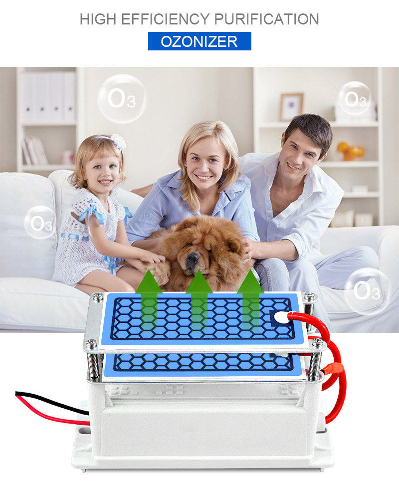 ATWFS 220v Air Purifier and Ozone Generator for Home Sterilization for Fresh and Healthy Breathing 8