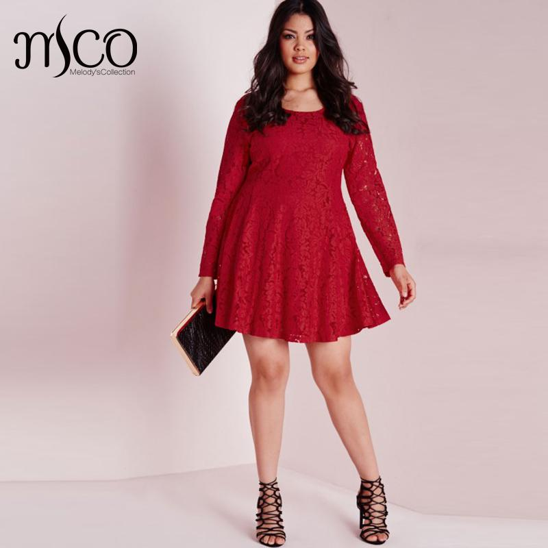 Vintage Premium Crochet Floral Lace Skater Dress Elegant Long Sleeve ...