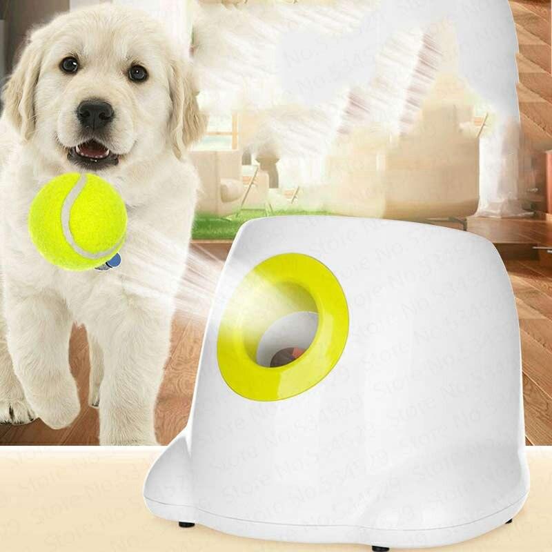Balle de Tennis automatique Interactive de lanceur de balle de jouet de chien d'animal familier roule la Machine lançant des boules de récupération outil de formation de chien