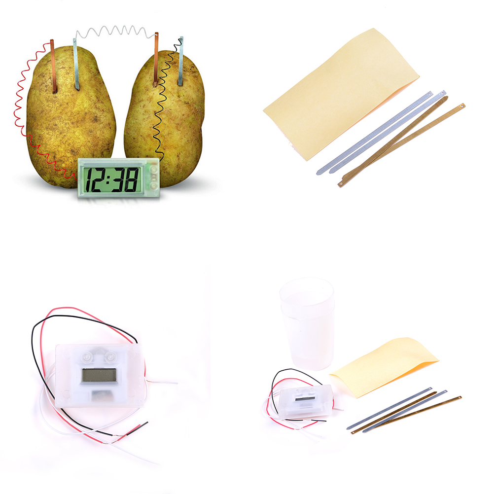 Éducatif drôle pomme de terre horloge roman vert Science projet expérience Kit laboratoire maison école jouet bricolage matériel pour enfants enfants