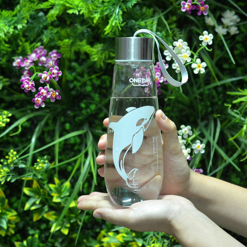 480ML Water Bottle With Bag Leak Proof Glass Water Bottle Drinkware Transparent Water Bottles Cute Anima Sports Fruit Tumbler