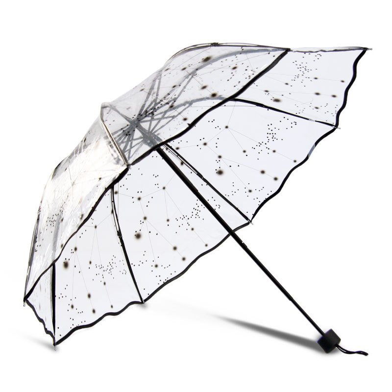 Top Selling Umbrella Rain Women Transparent Sunny and Rainy Umbrella ...