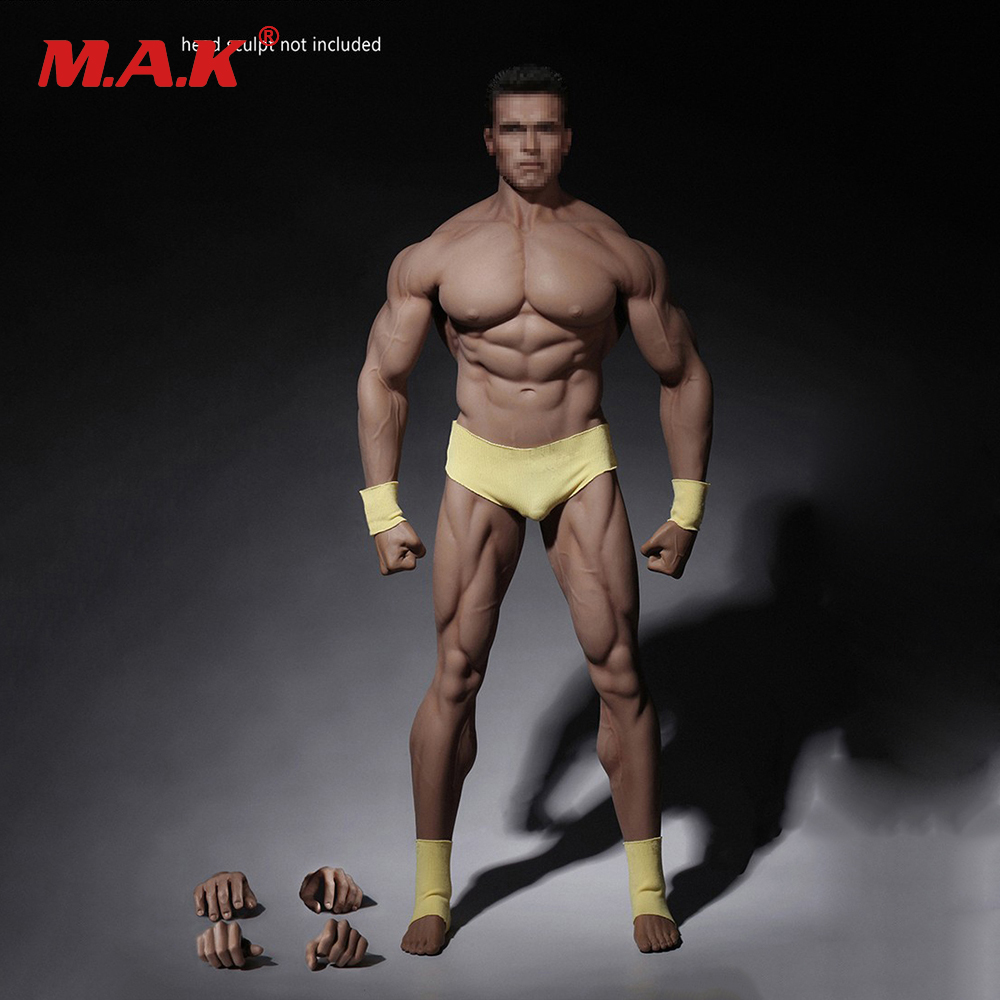 1/6 Male Super Strong Seamless Stainless Steel Body Muscular Figure Model PL2016-M34 PL2018-M35 TBLeague For Arnold Head tbleague pl2016 85 1 6 number female hunter arhian head huntress action figure model