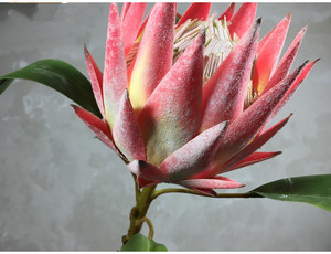 Image 2 - Pastoral Style 1 Piece Fake Flower Beautiful The King Protea Handmade Artificial Flowers Display Home Decorative Silk Flowers