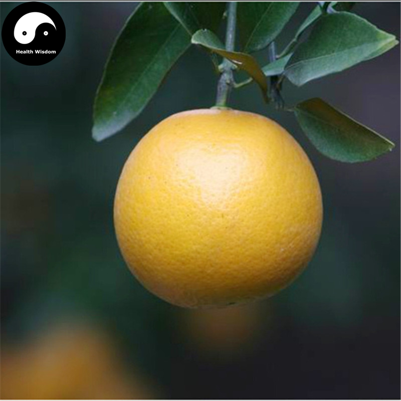Buy Gong Orange Fruit Semente 50pcs Plant Citrus Tree For Fruit Sweet Orange