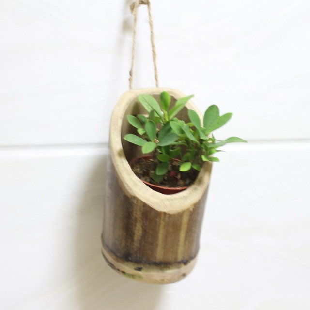 225 & US $12.5 |Creative Life Home Decoration Handmade Wooden Natural Bamboo Indoor Garden Small Hanging Wall Planter Flower Pots في Creative Life Home ...