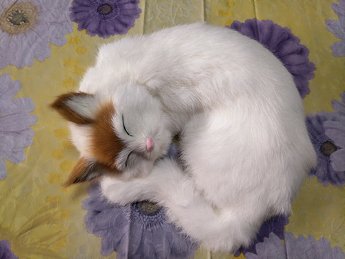 new simulation sleeping yellow head cat polyethylene & fur lovely cat model gift about 24x24cm158 new simulation cat sleeping cat lifelike white cat model gift about 19x8x14cm
