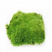 Искусственный мох высокого качества товары из Моха живой мох искусственное растение живое растение настоящая природа растение зеленая трава
