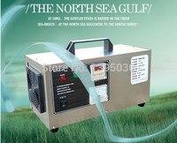 1 stück 110 V/220 V Plasma und Ozon Luftreiniger Tragbare Luftreinigung Und Sterilisieren Maschine OA T Ozon Luftreiniger maschine|ozon air|portable airair purifier -