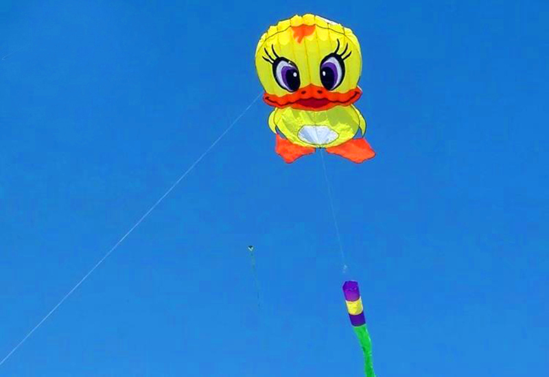 Высокое качество, мягкий нейлоновый воздушный змей в форме утки, спортивный воздушный змей ripstop, летающие игрушки Вэйфан, воздушные змеи, ходячие в небо, kaixuan emma