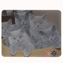 British Shorthair Mouse Pad DIY Custom Laptop Gaming Mouse Pad Non-Slip Rubber Mat