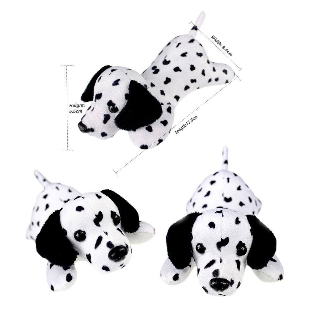 dalmatian dog_7