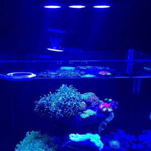 Image 2 - LED Spectra Nano Aquarium Light 30W Saltwater Lighting with Touch Control for Coral Reef Fish Tank US EU Plug