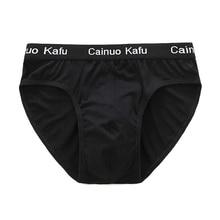 4 Pcs/lot Breathable Mesh Silk Men's Underwear New 2018 Briefs Men Bamboo Fiber Mens Bodysuit Male Comfortable Solid Underpants