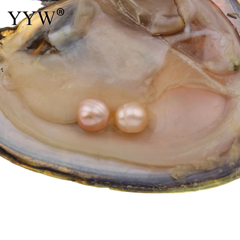 YYW Surprise Jewelry 7-8mm Potato Natural Freshwater Cultured Love Wish Pearl Oyster 1pc Inside Vacuum-pack Mussel Shell Oyster