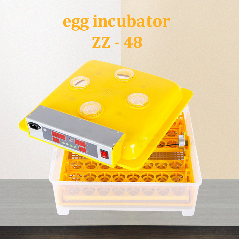 DULONG 48-eggs electric chicken incubator automatic temperature and humidity control home egg-turning machine chicken hatcherDULONG 48-eggs electric chicken incubator automatic temperature and humidity control home egg-turning machine chicken hatcher