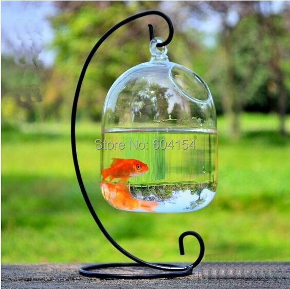 Unbelievable Only 819spherical Glass Fish Tankhome Furnishing