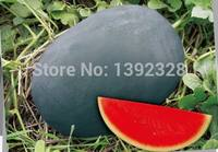Free Shipping 100pcs Lazy black watermelon seeds Vegetables fruit seeds (WM100-2)