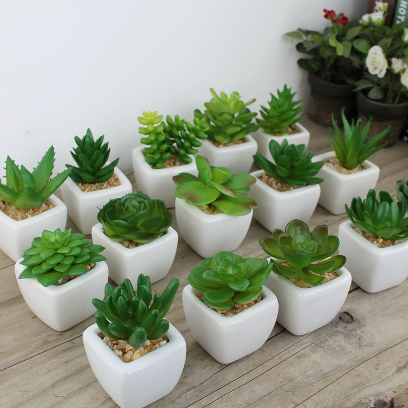 60pcs Decorative flower pots mini succulent plant bonsai artificial plants with vase tropical cactus potted on the desk WA1761