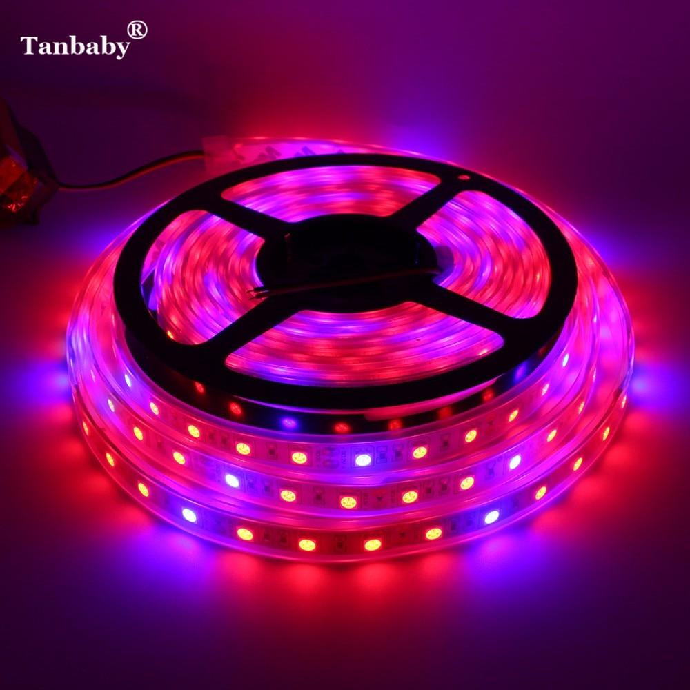 Tanbaby ضد آب DC12V 5M 300LEDs 5050 LED Plant Grow LED Strip Light طیف کامل 5050 قرمز آبی 3: 1،4: 1،5: 1 برای گلخانه
