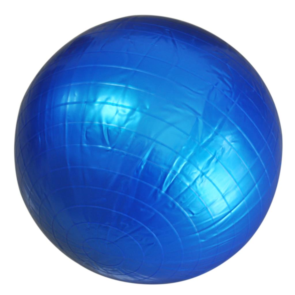 JHO- 65cm Exercise Fitness Aerobic Ball For GYM YoGa Pilates Pregnancy Birthing Swiss + inflated pump