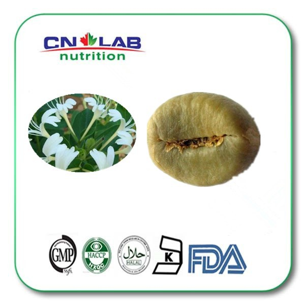 Bulk Powder Pure Green Coffee Bean Extract/50% Chlorogenic acid/Green Coffee Bean Extract 20g pure horny goat weed epimedium extract powder 98% icariin male health man sex pproducts