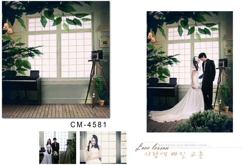 Fond de photographie de mariage personnalisé numérique imprimé vinyle décors lumineux fenêtres 200*300 cm Photo Studio accessoires