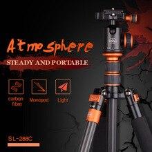 Buy SIDELANGBOLI Professional SL288C Carbon Fiber Travel Tripod Camera Monopod with Ballhead Stand For Canon Nikon DSLR DSLR