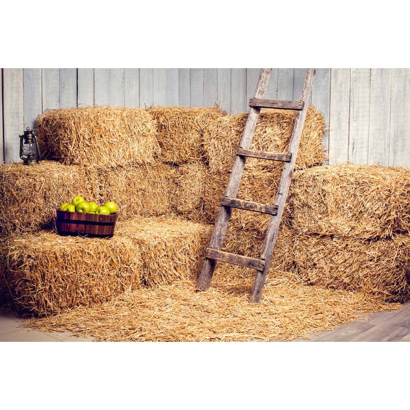 Vinyl Photography Backdrops Straw pile and wooden ladder Background Computed printed Children Backdrops for photo studio F-2741 1 5 2 5m vinyl photography background light spot computer printed children wedding photography backdrops for photo studio f 442