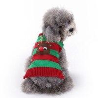 크리스마스 강아