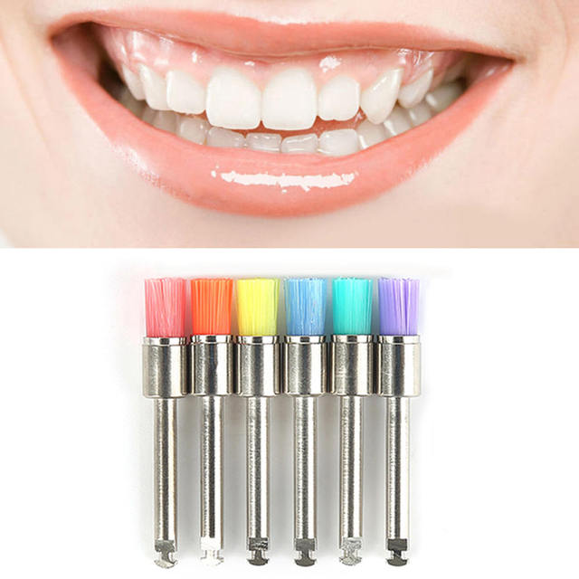 Polishing Brush Polisher Colorful Dental Prophy Brushes Polishing Polisher Colorful Nylon Cup type Lab Material