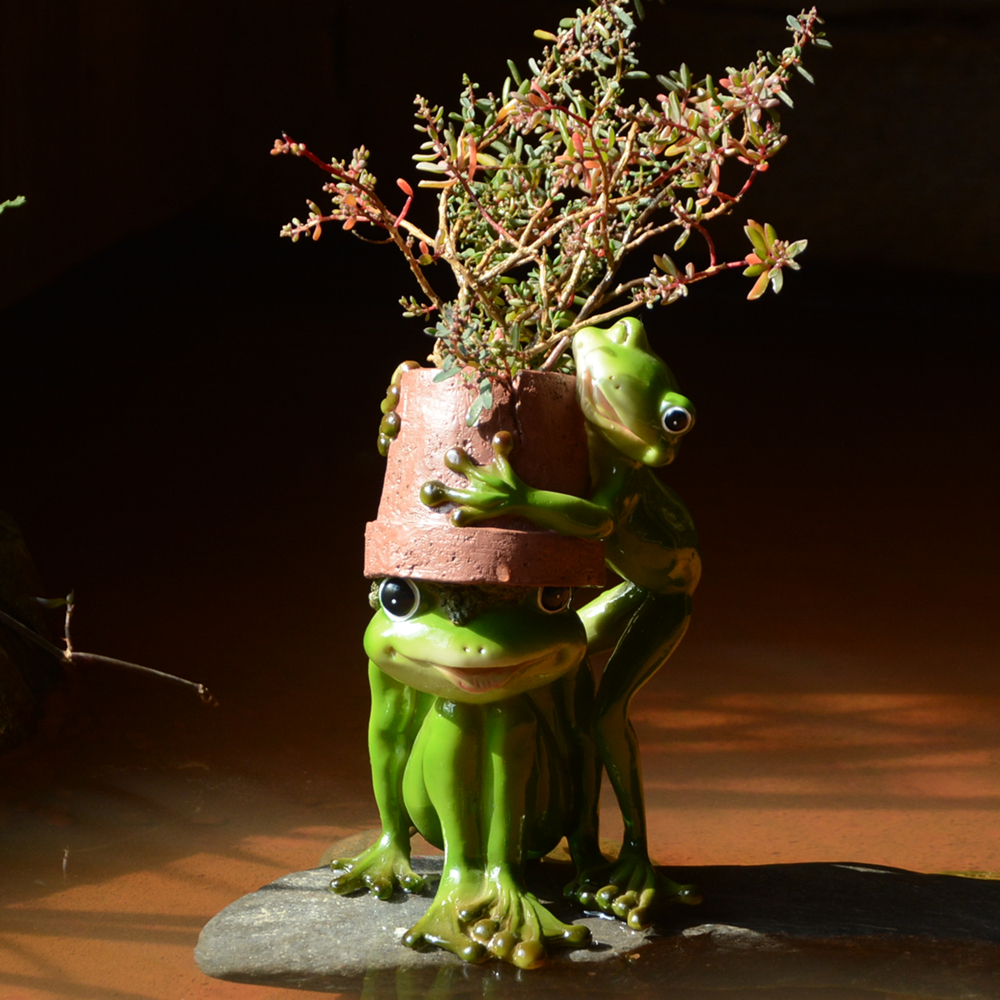 Image 4 - Everyday Collection Home Decor Mini Flower Pot Fairy Garden Animal Frog succulent pot Outdoor Decoration Clay Flowerpotclay flowerpotsdecorative flowerpotsgarden flowerpot -