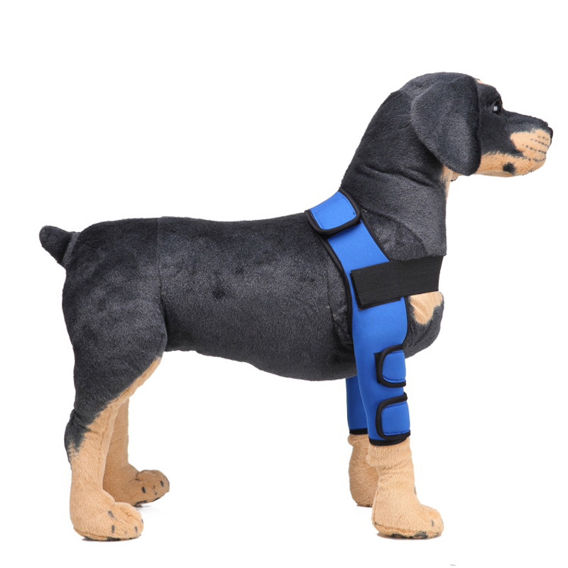 New Type Of Dog Knee Protection Can Improve The Flexibility Of Dog Knee Protection And Pet Training Protective Equipment