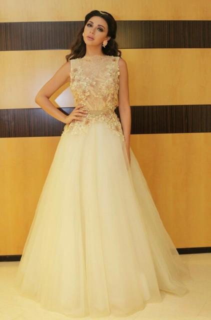 Mel Qiao Myriam Celebrity Dresses 2017 Marfim Tulle Sheer Neck Applique Flores Árabe Dubai Abiye Elegantes Vestidos de Noite