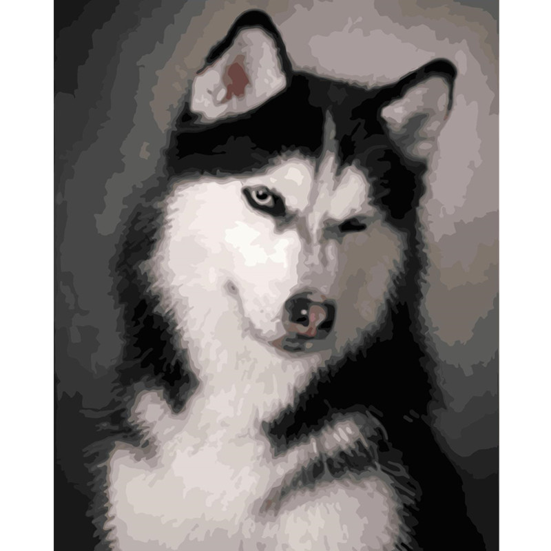 Painting By Numbers DIY Dropshipping 40x50 50x65cm Cute husky dog Animal Canvas Wedding Decoration Art picture Gift image