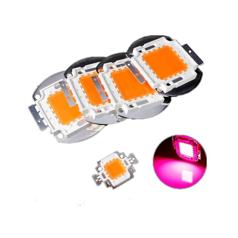 Gerade Led Cob Voll Sepctrum 10 W/20 W/30 W/50 W/100 W Anlage Wachsen Licht Chip High Power Bead Lampe Modul Flutlicht 400-840nm 1 Stücke Licht & Beleuchtung