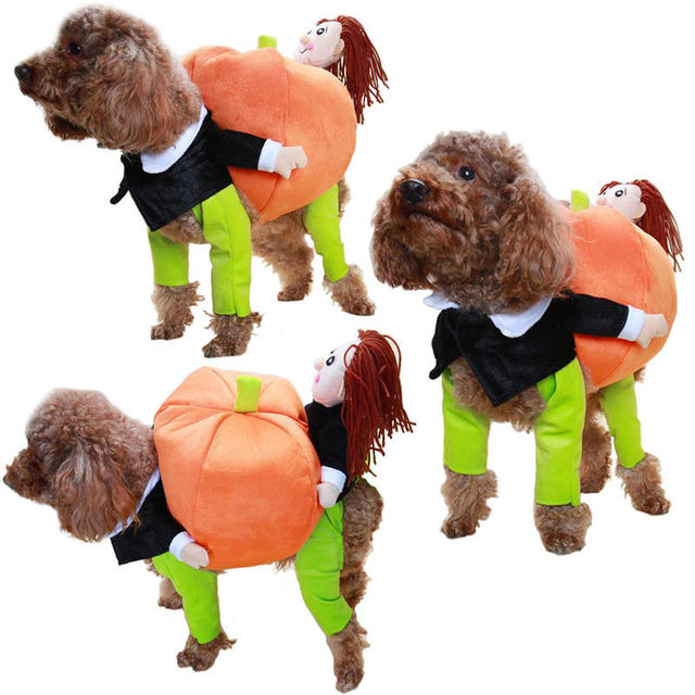Chirstmas Dog Pumpkin Costume Funny Pets Clothes Creative Puppy Apparel Cosplay Dress Up Cozy Party Suit  sc 1 st  AliExpress.com & Chirstmas Dog Pumpkin Costume Funny Pets Clothes Creative Puppy ...